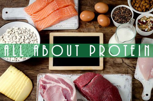 different food sources of protein